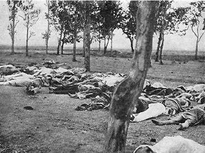 Armenian genocide victims by Morgenthau