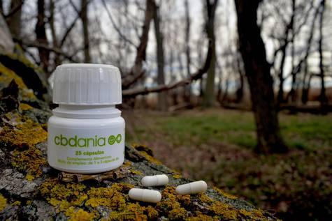 La empresa CBDANIA desarrolla desde CEEIARAGON aceite de cannabis para uso terapéutico