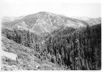 Between La Port and Johnstown, Ca 1946