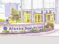 Alaska SeaLife Center - by MM Rydesky