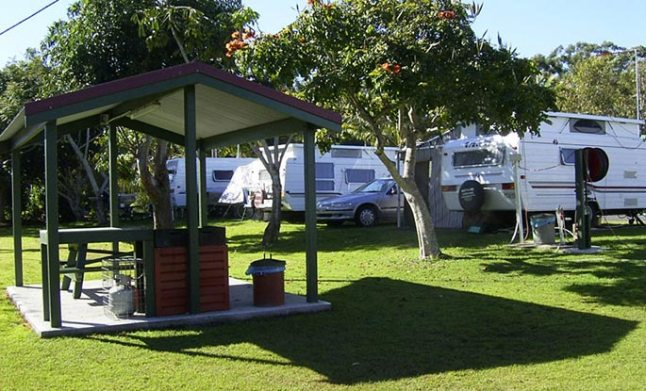 View the sites available at Anchorage Holiday Park, the perfect accommodation when you are in Iluka or on the far north coast of NSW