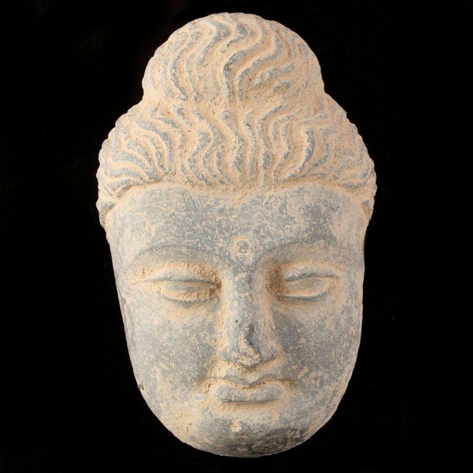large gandharan buddha head