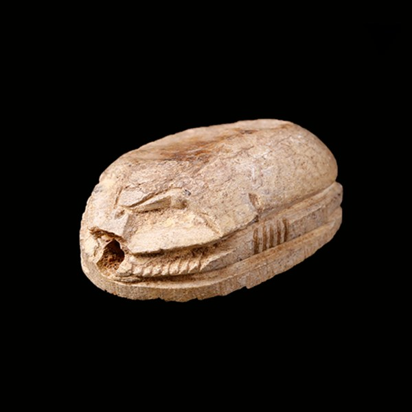 Large Mustaki Collection Steatite Scarab