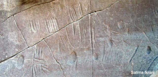Panel de roca del oasis de Kharga, Egipto, que se cree contiene el único ejemplo conocido de araña en el arte rupestre de Egipto. Fotografía: Salima Ikram