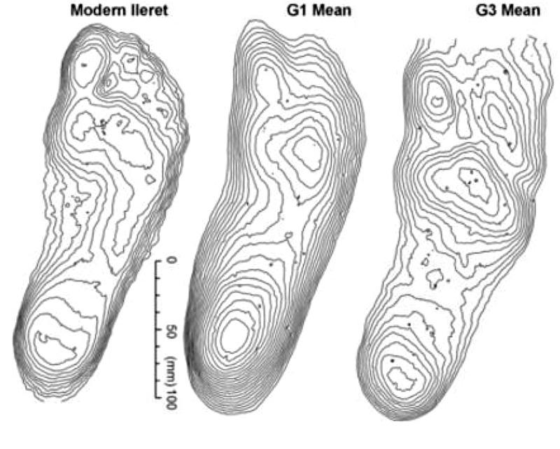 Comparativa de huellas de Laetoli con la huella de un ser humano actual. Izquierda: Ser humano actual. Centro: Caminante de Laetoli número 1. Derecha: Caminante de Laetoli número 3. (Imagen: La Gran Época/Universidad de Bownemouth)