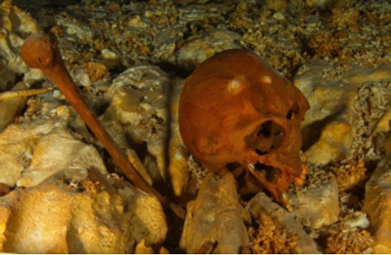 Cráneo de Naia (HoyoNegro.org)