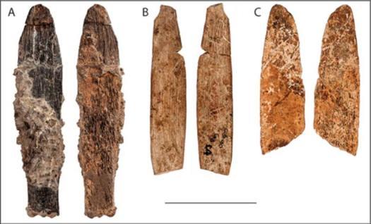 A (Cueva de Dar es-Soltan 1); B y C (Cueva de El Mnasra) Imagen: Silvia Bello y Mohammed Kamal (Fotokam, Marruecos)