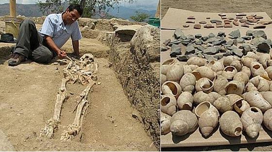 Esqueleto y caracolas hallados en el yacimiento de Montegrande. (Fomento a la Inversión Privada y Turismo-JAEN)
