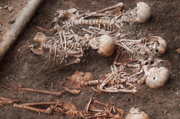 """Esqueletos desenterrados durante las excavaciones arqueológicas en el """"yacimiento de la Catedral"""" de Saint Poelten, en Austria (Ingrid Hedbavny / Flickr)"""