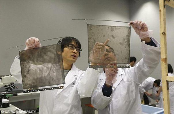 Los científicos examinan las placas. (Universidad de El Cairo)