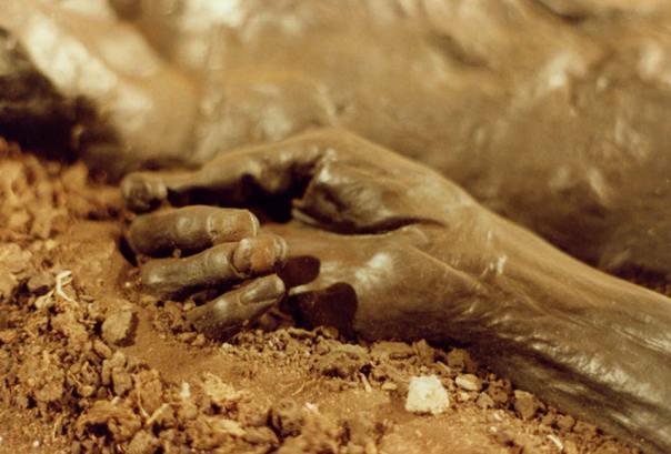Mano del Hombre de Grauballe. Obsérvese su excelente estado de conservación. (Public Domain)