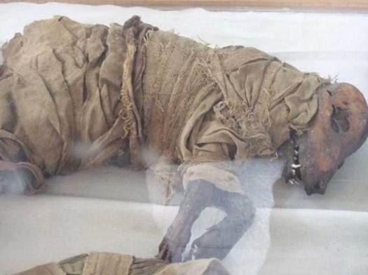 Perro momificado, Asyut, Egipto Medio. Museo de la Escuela Taggart (Flickr)
