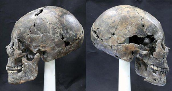 Portada - Cráneo elongado de una mujer de la cultura Silla hallado en Corea y reconstruido a partir de numerosos fragmentos.