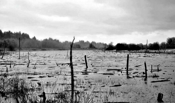 Portada - La gran inundación china de hace 4.200 años fue real, según afirman diversos geólogos. (Fotografía: La Gran Época/Jullia Alexander /EyeEm)