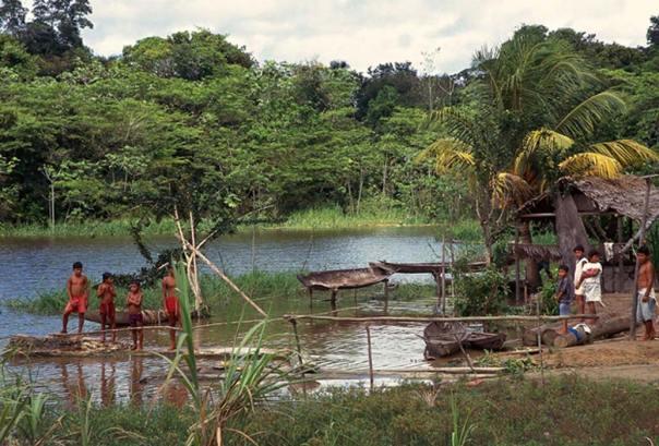 El área del antiguo asentamiento de la Amazonia carece de cualquier tipo de roca para hacer herramientas de piedra. (Omer Bozkurt / CC BY-SA 2.0)