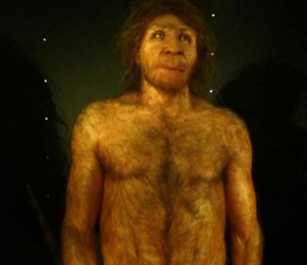 Edad de piedra H. heidelbergensis reconstrucción masculina adulta. (Dbachmann / CC BY-SA 4.0)