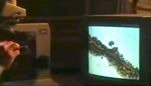 Al probar el osario de James, se descubrió un hongo que demuestra que el antiguo artefacto era auténtico. (ActsNewsNetwork / YouTube Screenshot)
