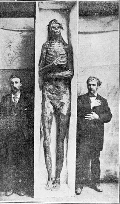 igura 12. El gigante de San Diego fue comprado por el Smithsoniano de $ 500 (más de $ 14,000 en dinero de hoy) en 1895, a pesar de que más tarde afirmaron que era un engaño.