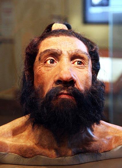 Un modelo de una cabeza masculina adulta Neandertal y los hombros en exhibición en el Salón de orígenes humanos en el Museo Smithsonian de Historia Natural en Washington, DC