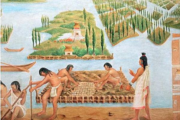 Ancient Aztec Chinampas