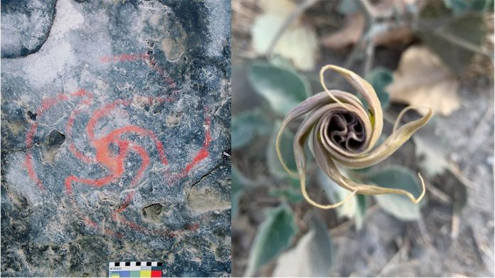 Magic Flowers of U.S. Dream Trippers Found at California's Pinwheel Cave |  Ancient Origins