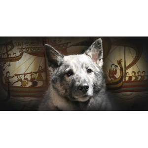 Nice Chinese Mythology Dogs Greek Mythology Greek Mythology