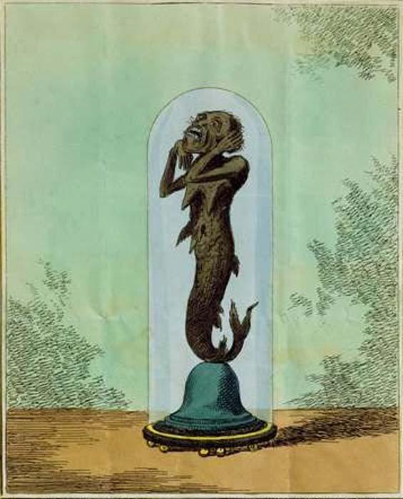Зображення того, що пізніше стане відомим як Русалка на Фіджі, за замовленням капітана Семюеля Барретта Ідеса