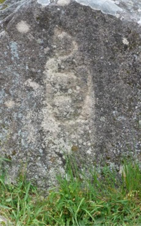Una serpiente tallada en una roca en el yacimiento de la Edad de Hierro de Castro de la trona: si se trata de la edad de hierro en sí o más que no sabemos.