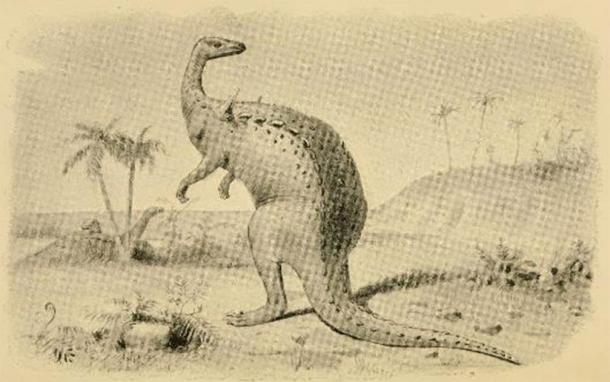 Bipedal Scelidosaurus illustration from 1896. (FunkMonk/CC BY 2.0)