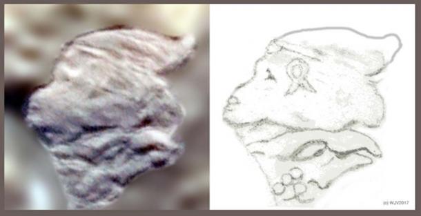 FIGURES 5 et 5a: Un pétroglyphe, situé sur l'île Marambio, dans le coin nord-ouest de l'Antarctique, présente un profil de visage de singe tout à fait inhabituel, qui sous-tend la tête d'un aigle. La tête est marquée d'un symbole SIG en boucle ouverte sur la joue gauche. Trois cercles (pierres) sont joints à l'arrière de la tête de l'aigle. Une date peut-être?