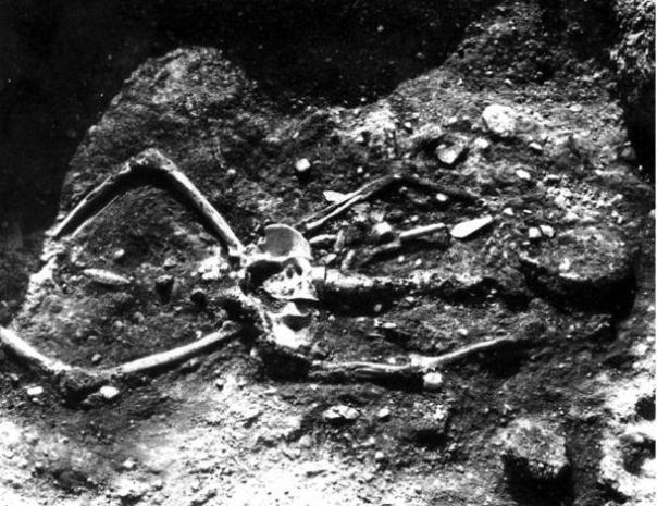 Figura 6: 7 pies 2 pulgadas esqueleto con la parte superior del esqueleto quemado.