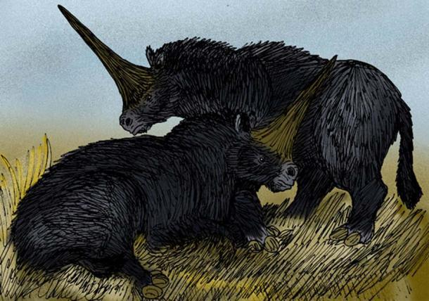 "Interpretazione dell'artista del rinoceronte ""Unicorno gigante"", Elasmotherium sibiricus del Pleistocene Siberia."
