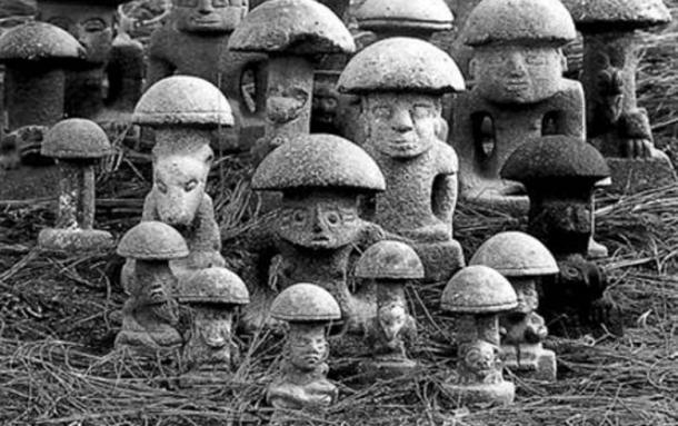 Image result for history of magic mushrooms