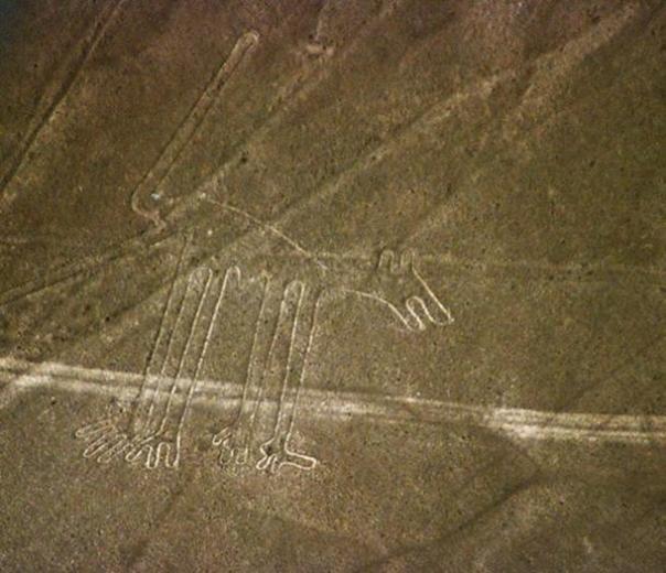 Las líneas de Nasca figura conocida como el perro.
