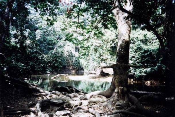 Il Osun-Osogbo Sacred Grove