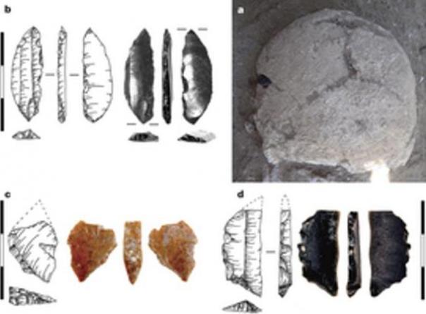 a. Cranium como se encuentra in situ, con la hojita de obsidiana encontró incrustado en el hueso parietal izquierdo. b, Detalle de hojita de obsidiana, mostrando la cicatriz del impacto en la punta. c, d, microlitos encontró dentro del cuerpo.