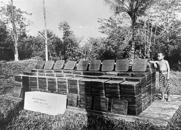 Late-19th-century Indonesian gutta-percha plantation with stacks of rubber-like blocks.
