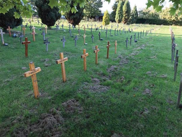 Croix en bois des pierres tombales caractéristiques du cimetière pour animaux de Buena Vista, Leicestershire.  (K. Bridger / Antiquité)