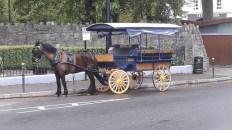 Ireland Tours Killarney