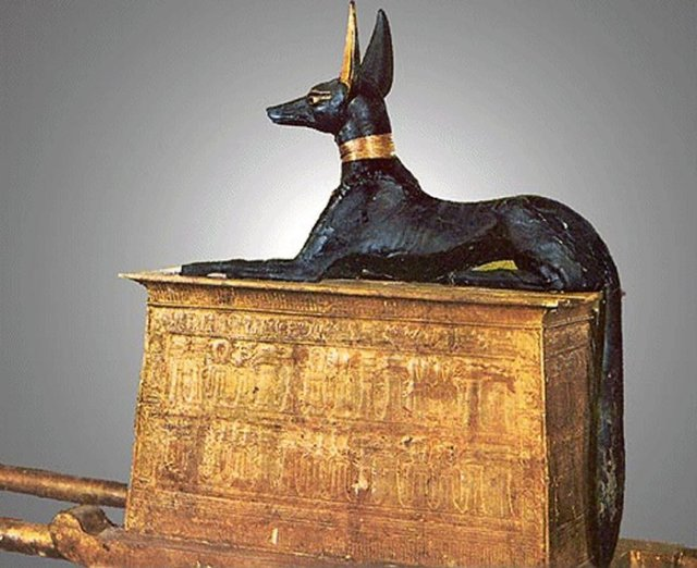 Anubis. Image: Cairo Museum