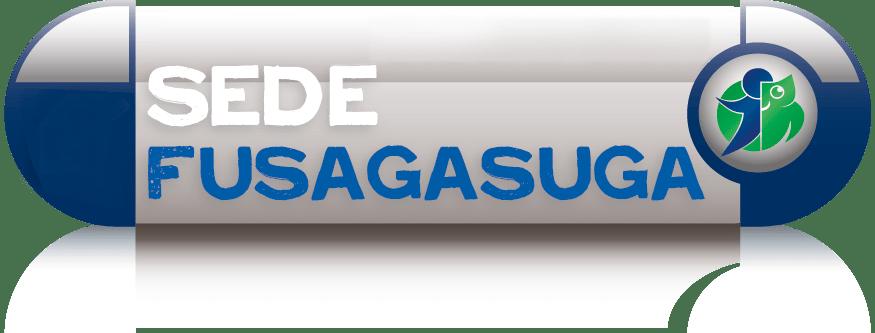 q10-fusagasuga