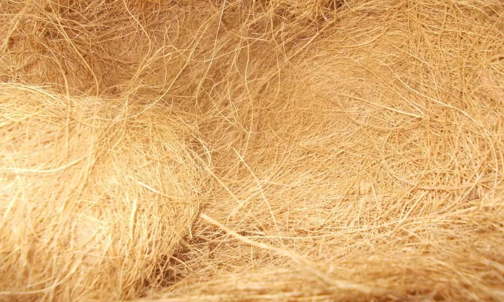 Sabut Kelapa Coconut Fiber