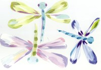 Scan of dragonfly decals.