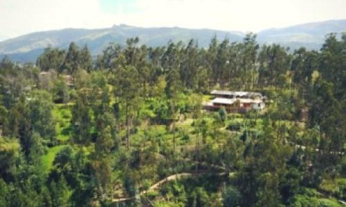 Jimenita forest quito photography tour Ecuador & Galapagos