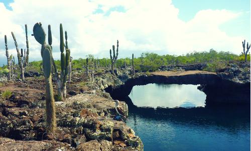 galapagos volcan tunnel photography tour Ecuador & Galapagos