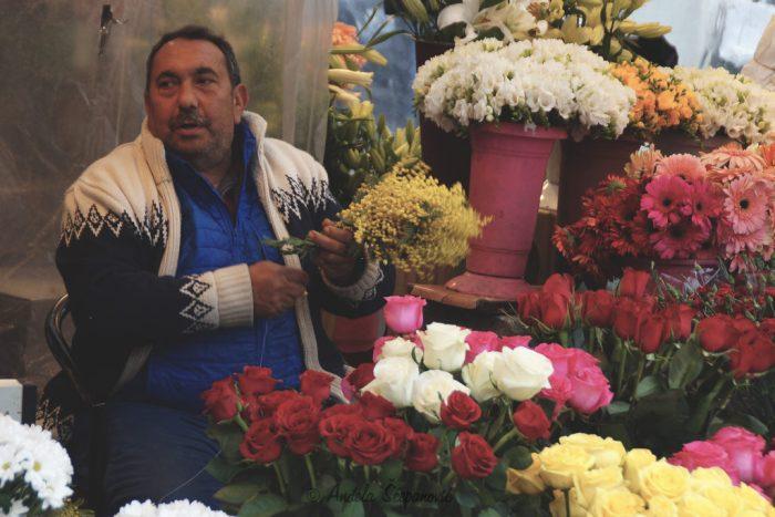 Cvijećarnica na Taksim trgu