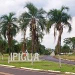 seguro de carro em Ipiguá