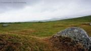 """Auf der Suche nach dem """"Hund von Baskerville"""" im Dartmoor"""