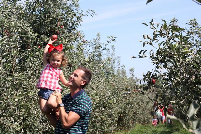 Eckert's Farms Apple Fest!