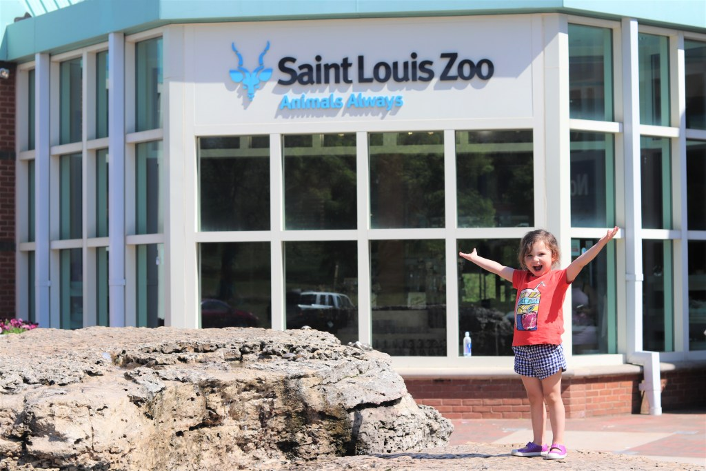 Best St. Louis Kids Activities – The Saint Louis Zoo